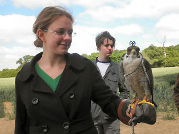 Alice with a Peregrine Falcon