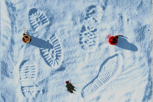 'Footprints in the snow'